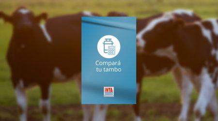 2º Webinar Podología bovina parte 2