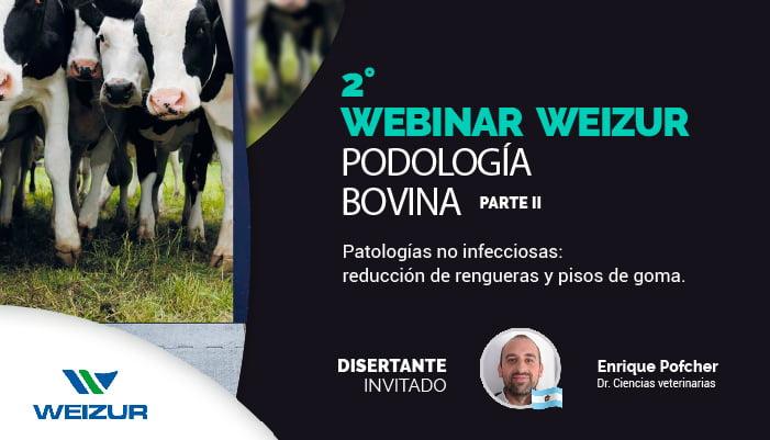 qué saber de podología bovina