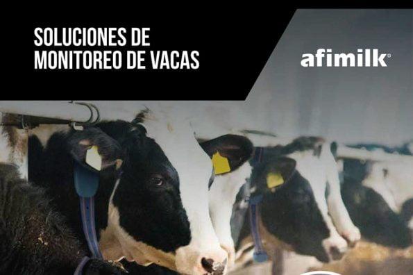 Soluciones de monitoreo de vacas