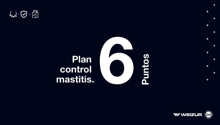 prevenir mastitis